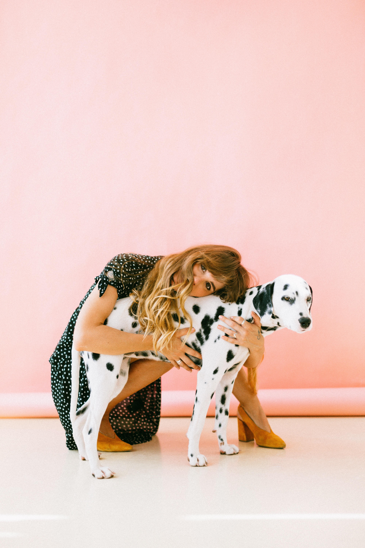 education-positive-chiens-dalmatien
